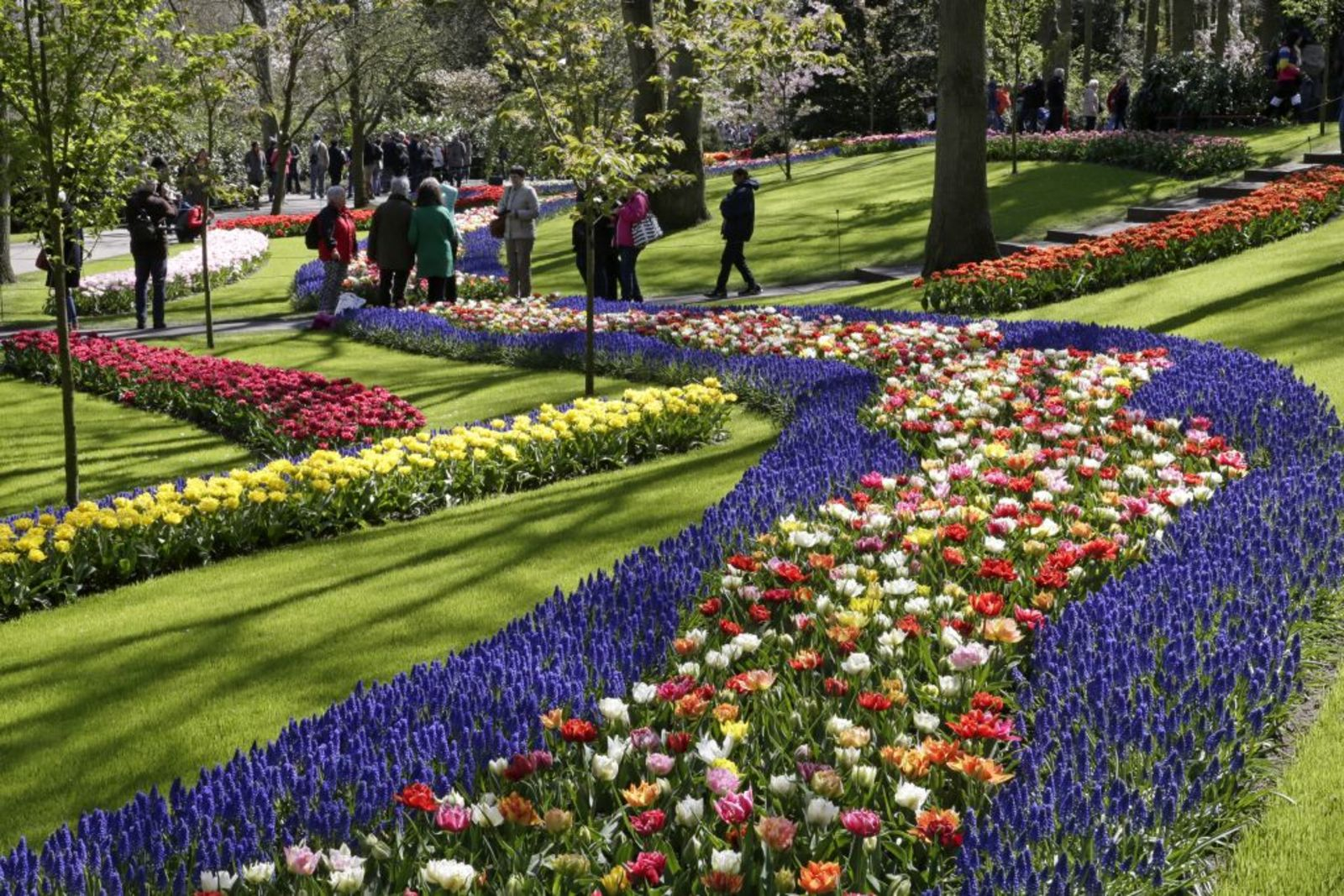 Keukenhof tickets with parking card