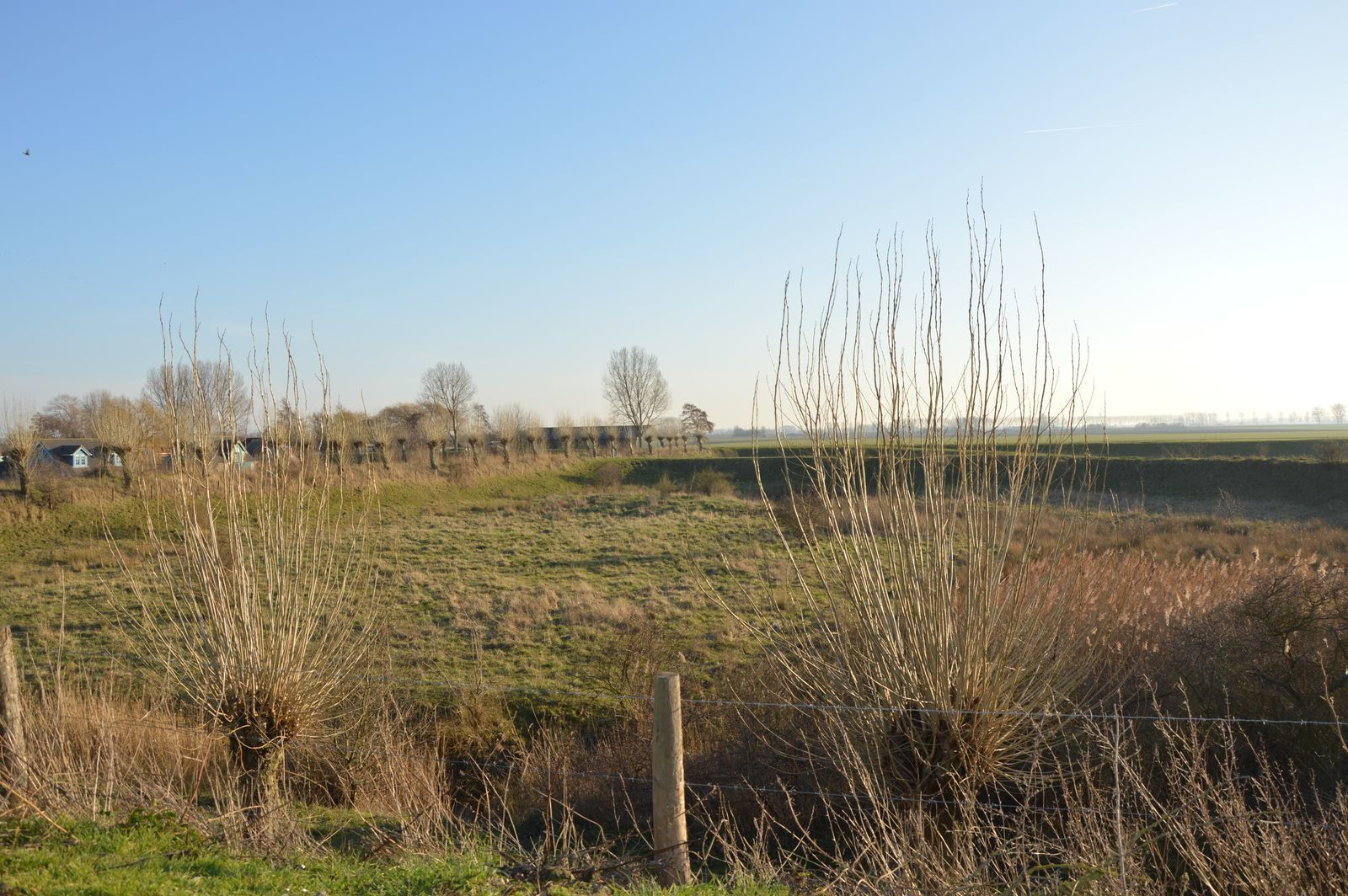 Grasse 158 - Kustpark Village Scaldia