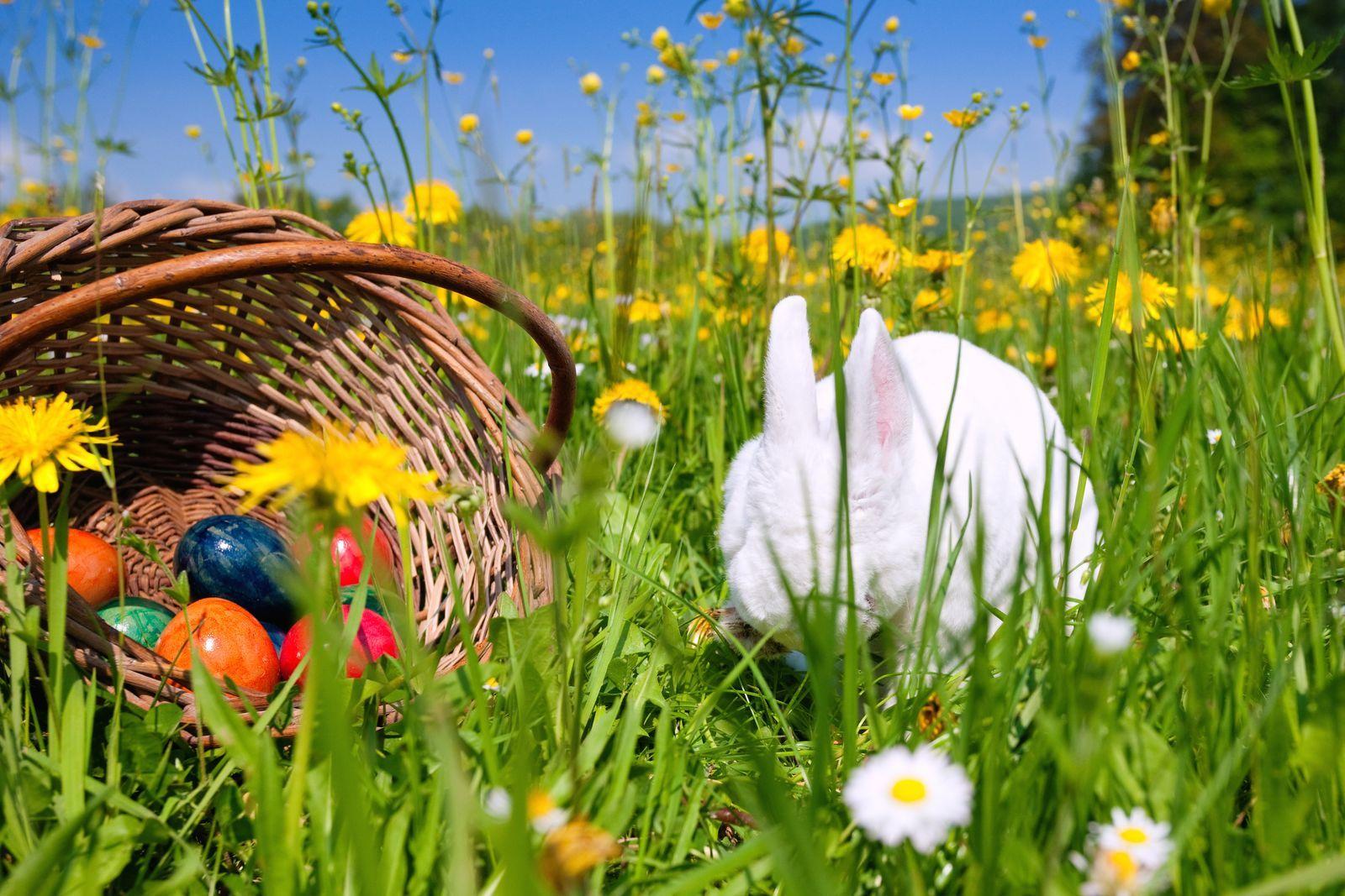 Lang weekend weg met Pasen!