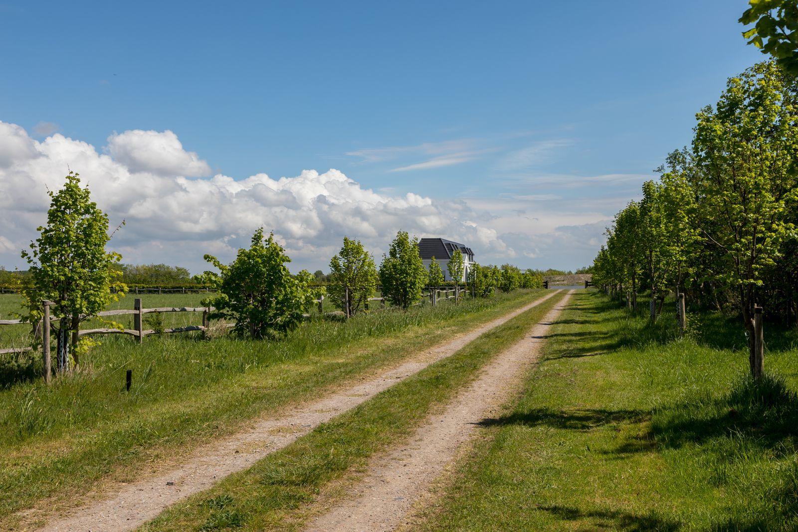 Landgoed - Houtenburgseweg 46 | Zoutelande 'Landgoed Kustlicht'