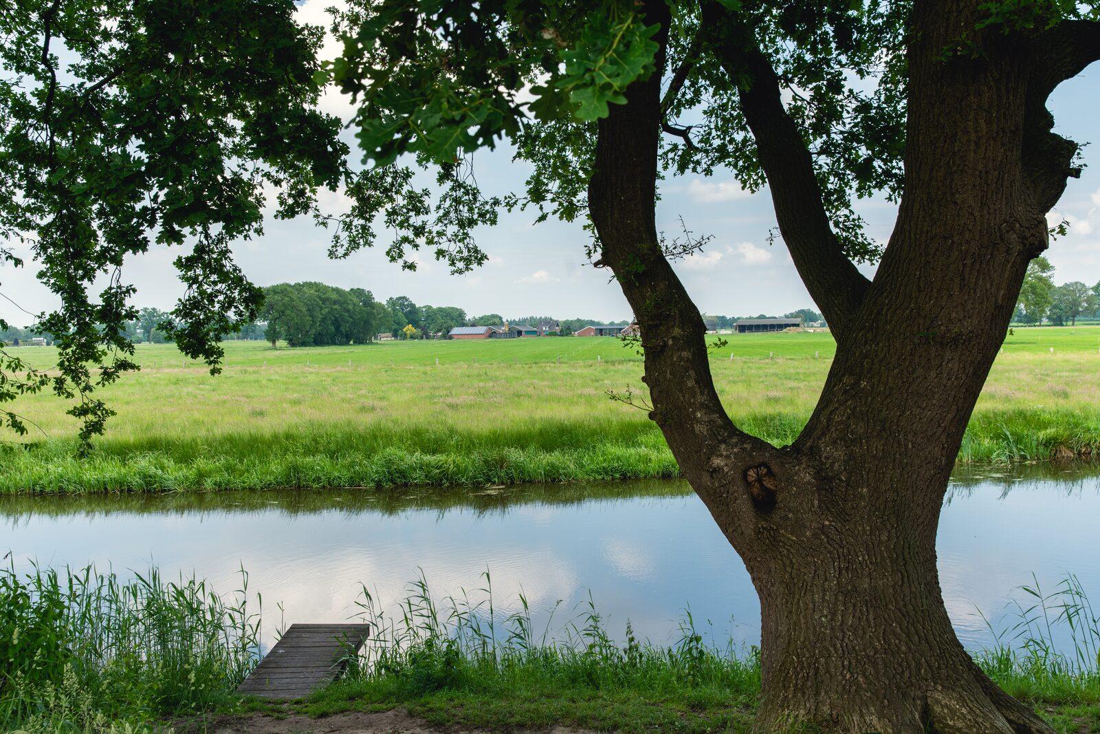 Reetgedecktes Ferienbauernhaus für Gruppen geeignet
