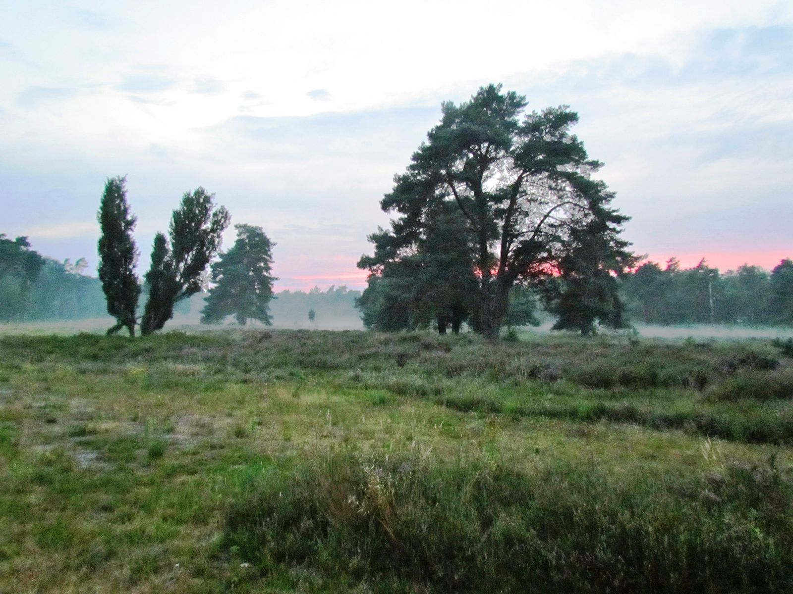 Buitenplaets de Heide Woonhuis - groot 14 persoons vakantiehuis  in Twente voor actief familieweekend