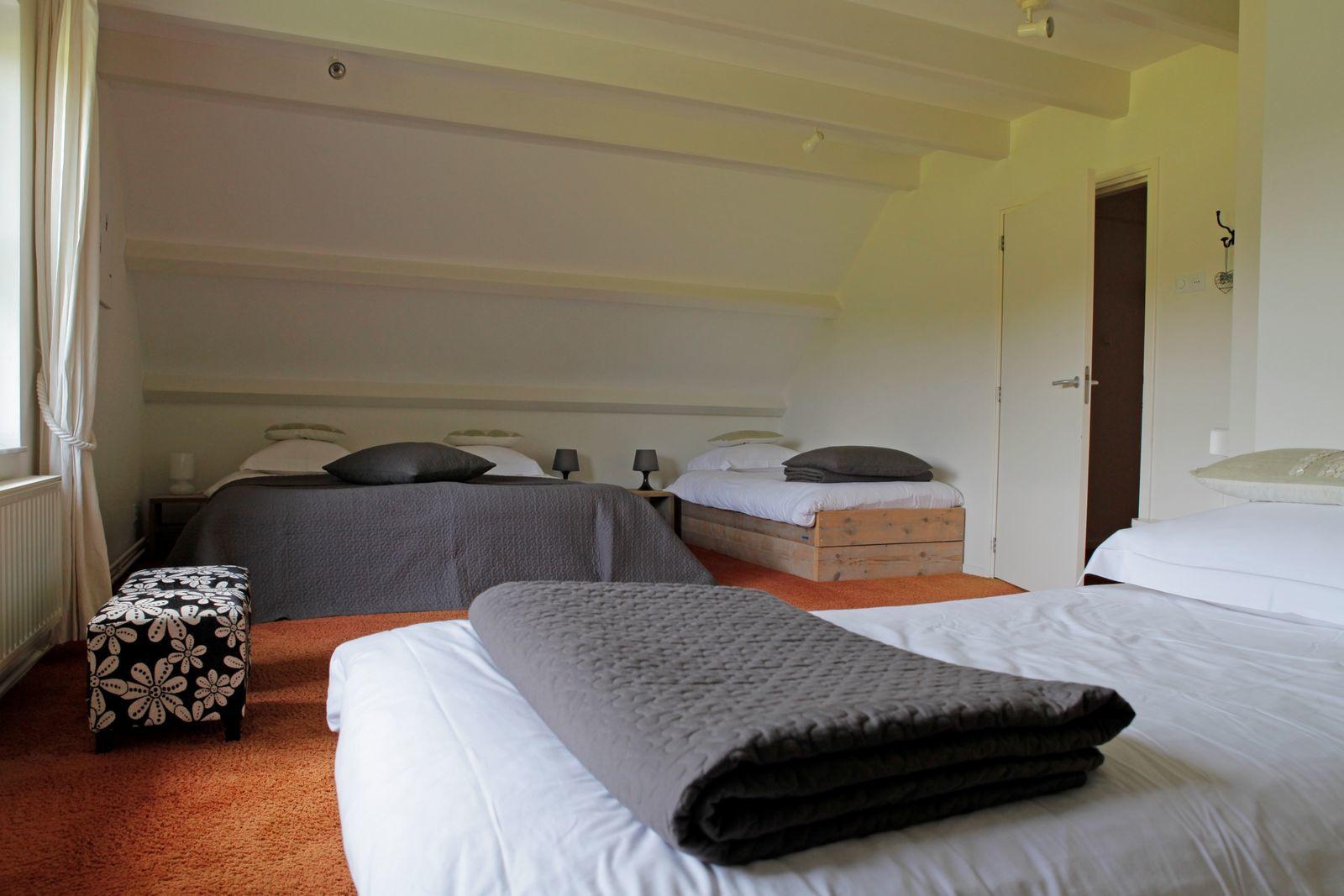 Villa + Gastenverblijf de Hondsrug - luxe vakantiehuis Drenthe met hottub