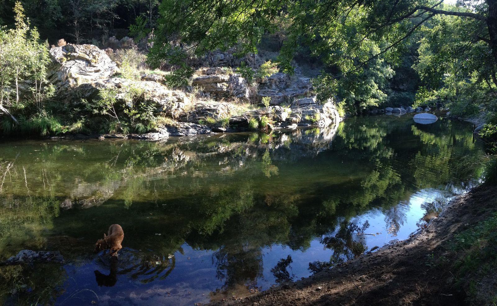 Afbeelding van Cevenolse Mas gîte Donzel - vakantie voor natuurliefhebbers