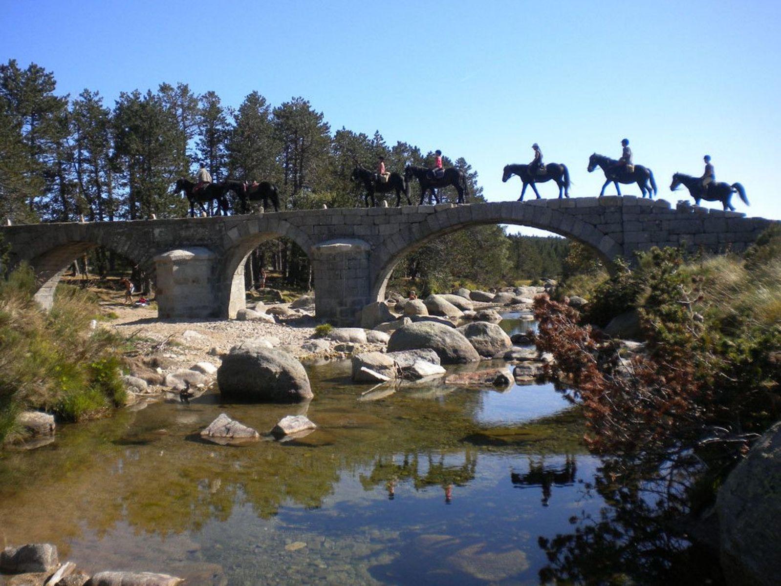 Cevenolse Mas gîte Verdier - vakantie vieren middenin de natuur