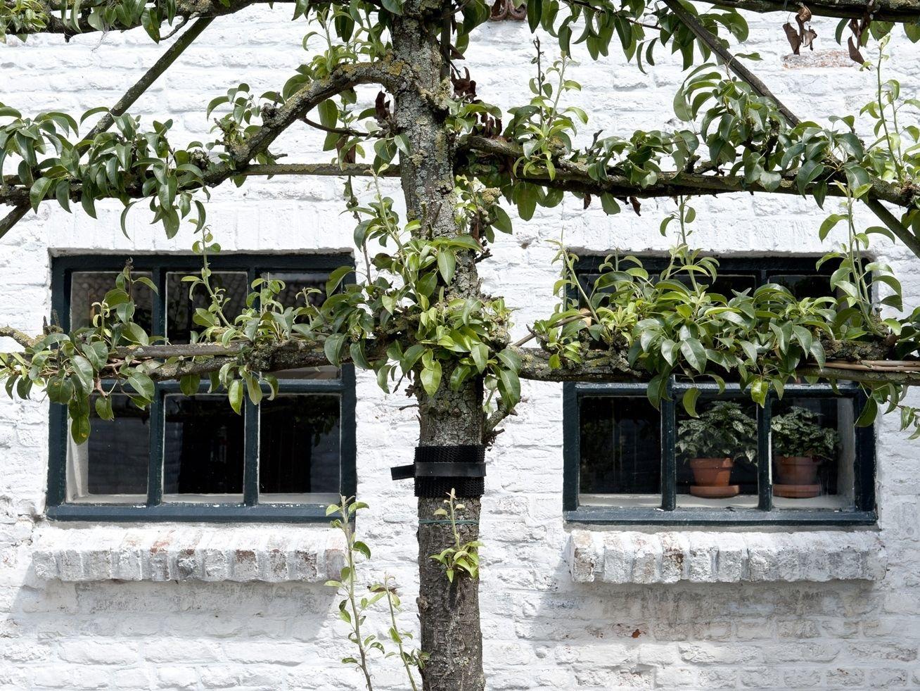 Afbeelding van Caberger Hoeve Loftsuite - romantisch weekendje Maastricht voor 2 personen
