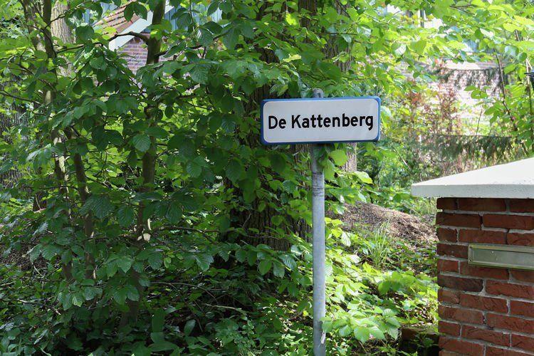 Afbeelding van De Kattenberg 8 persoons