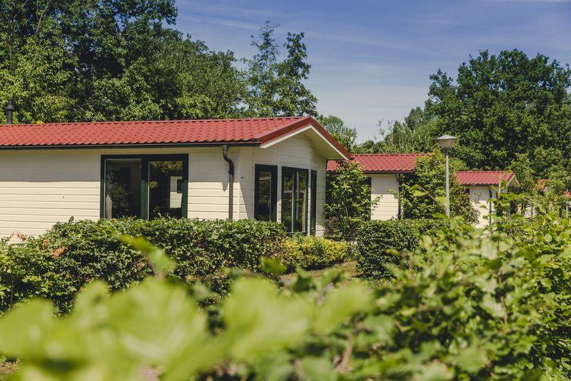 6p Bungalette met sauna op vakantiepark Molke