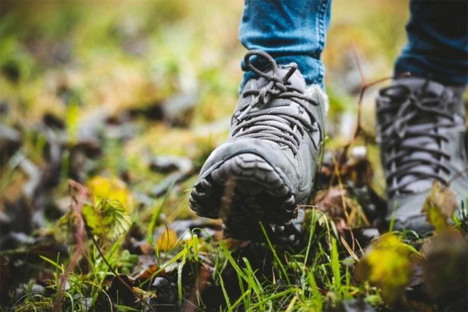 Reggestreek Wandel4daagse, kamperen 5 nachten - 2019