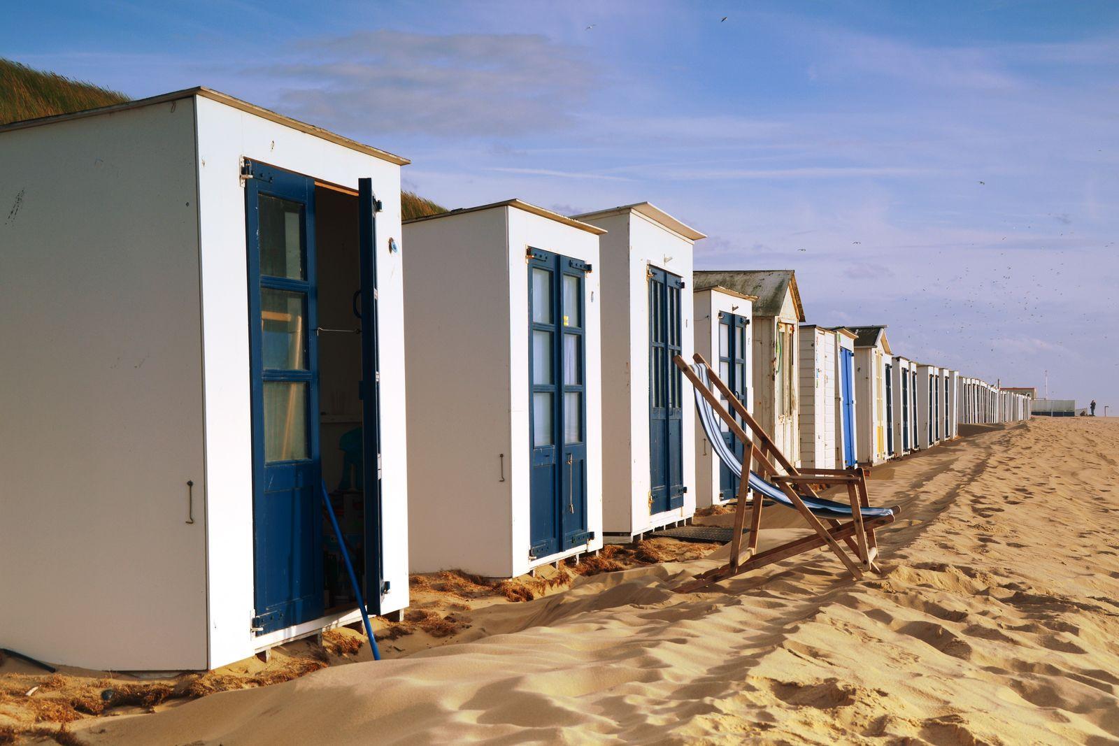 Afbeelding van Texels Landleven XXL - luxe vakantiehuis met sauna en ecozwemvijver