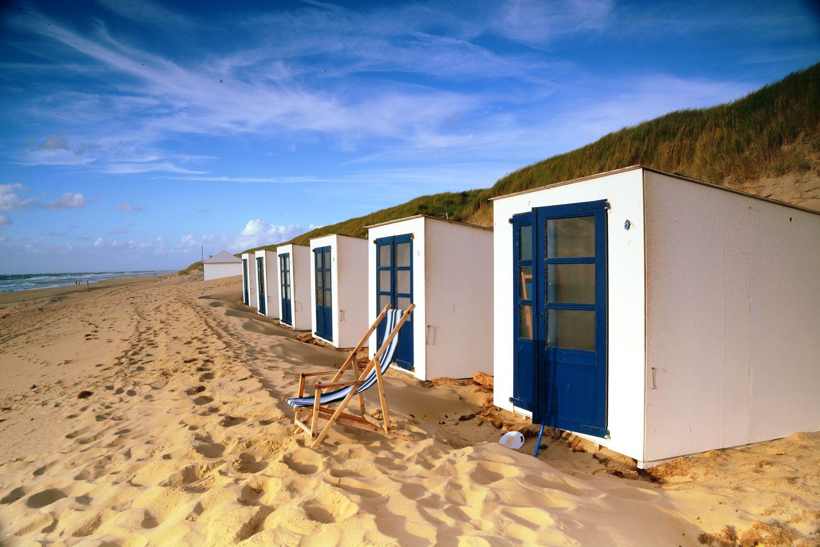 Afbeelding van Texels Landleven XL - groepsvakantiehuis met sauna en ecozwemvijver