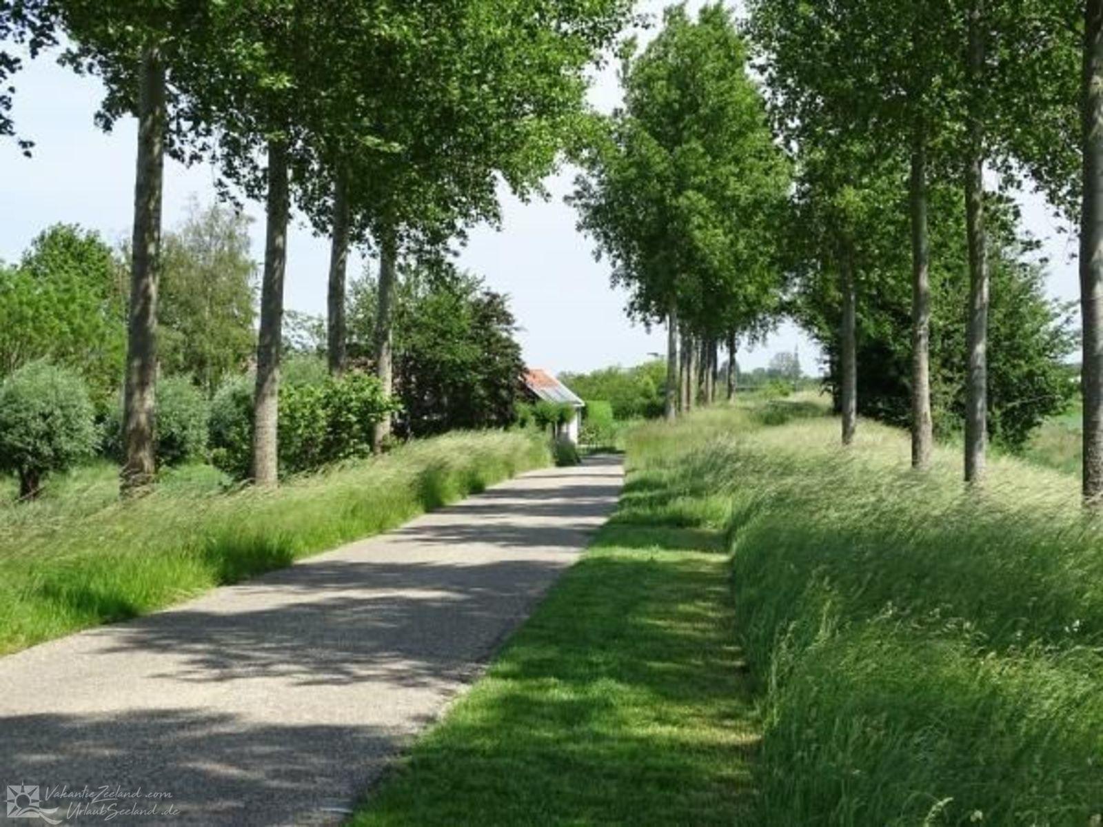 VZ577 Holiday Home Wolphaartsdijk