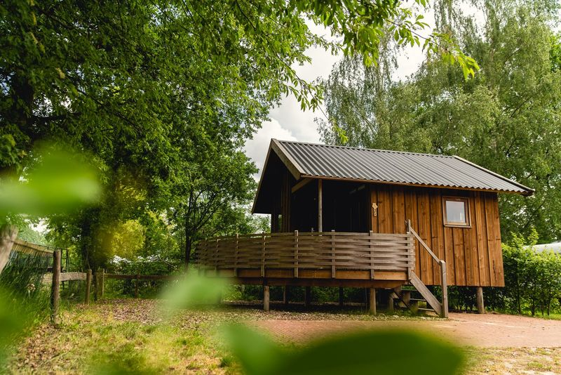 4p Regge Cottage op vakantiepark Molke