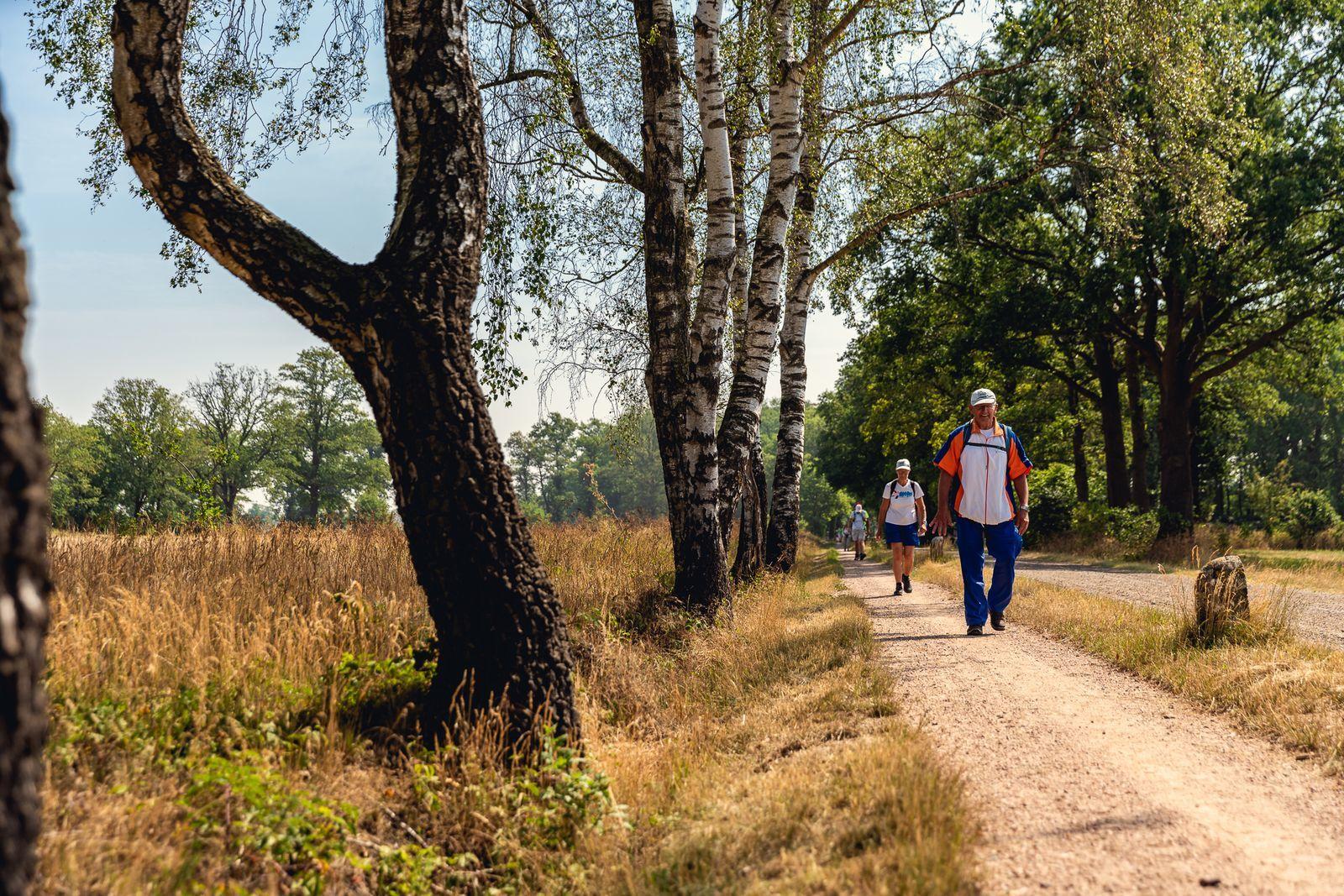 Reggestreek Wandel4daagse, verblijf 6 dagen in een luxe accommodatie inclusief halfpension (2019)